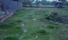 Bán gấp nền đất lúa 6x23m2 ngay ấp An Thủy, xã An Ninh Tây
