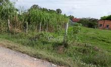 Bán gấp nền đất 20x45m, ngay Ấp An Hưng, xã An Ninh Đông