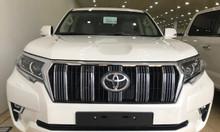 Giao ngay Toyota Prado VX 2019