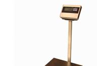 Cân bàn điện tử A12 thông dụng phổ biến