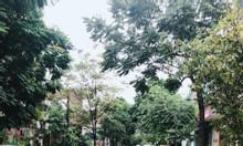 Bán đất giá rẻ Đà Nẵng chính chủ Lâm Quang Thự