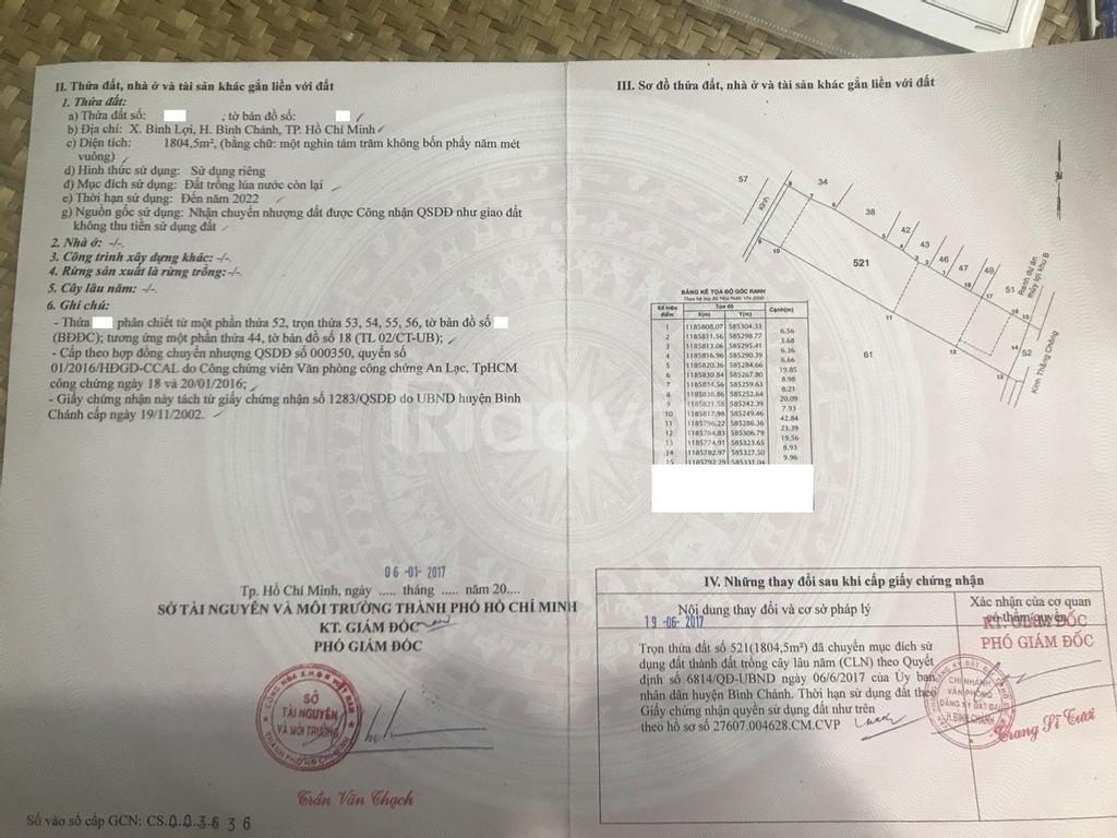 Cần bán lô đất 1800m đường Vườn Thơm, xã Bình Lợi huyện Bình Chánh