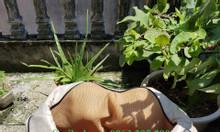 Đai massage vai gáy giảm đau cao cấp Hàn Quốc, máy mát xa hồng ngoại