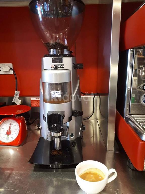 Thanh lý máy xay cafe Casadio Enea 64