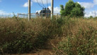 Bán nhà xưởng, đất vườn 2700 ha tại Đắc Nông, 180 tỷ (ảnh 2)