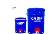 Chuyên cung cấp sơn dầu không mùi Cadin giá tốt