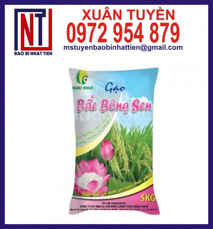 Túi đựng gạo 5kg PA/PE hút chân không
