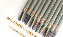 Cáp CU/PVC/PVC có lưới chống nhiễu