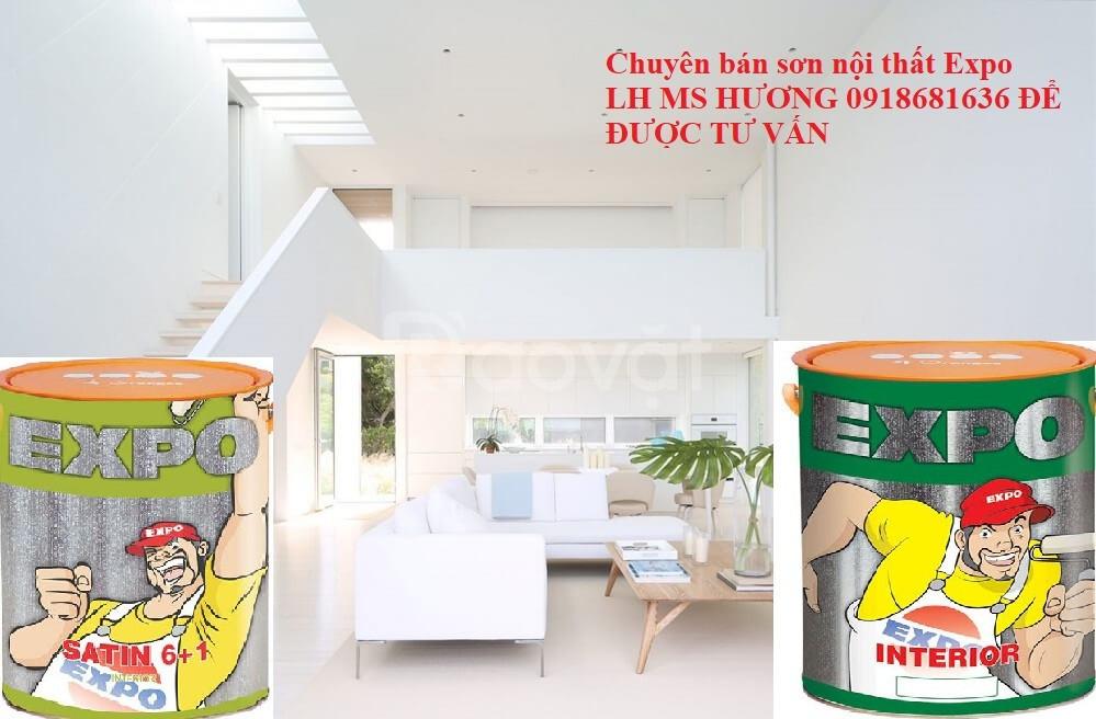 Đại lý bán sơn nội thất Expo chính hãng tại Đồng Nai