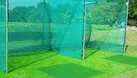 Thanh lý cổ nhân tạo giá rẻ dùng trang trí sân vườn nhà cửa chơi tết (ảnh 1)