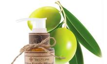 Dầu olive hữu cơ - Olive Oil
