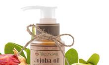 Dầu jojoba hữu cơ - Jojoba Oil