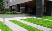 Cho thuê căn hộ mini Orchard Garden 29m² 1PN