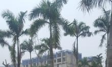 Bán nhà liền kề HTT1 dự án La Casta Văn Phú, Lê Trọng Tấn