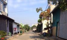 Đất đường Hoàng Phan Thái Bình Chánh, 550 triệu/100m2 sổ hồng riêng