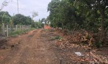 Đất cổng sau khu công nghiệp Dầu Giây