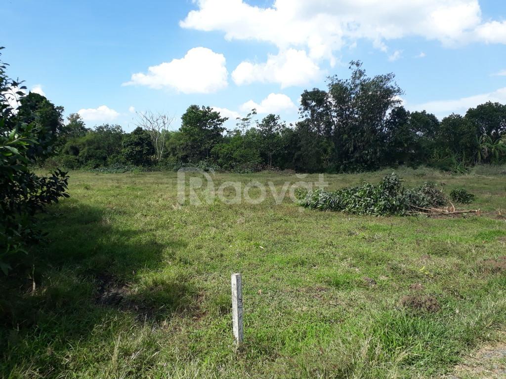 Cần bán lô đất 1,5 ha cách đường Bàu Cạn lộ giới 32m tầm 300m