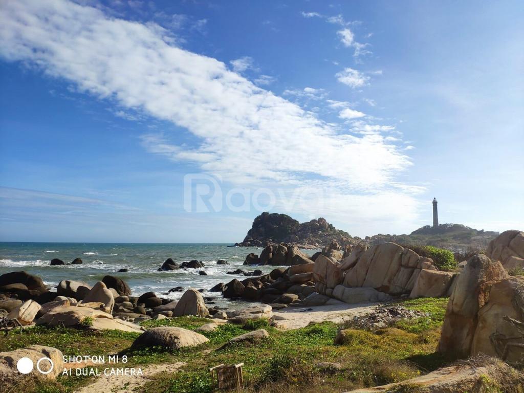Đất nền biển Lagi Bình Thuận 8500 triệu