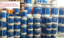 Nhà phân phối sơn epoxy Cadin trên toàn quốc
