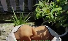 Đai massage giảm đau vai cổ gáy hồng ngoại mẫu mới 2019, máy bóp vai