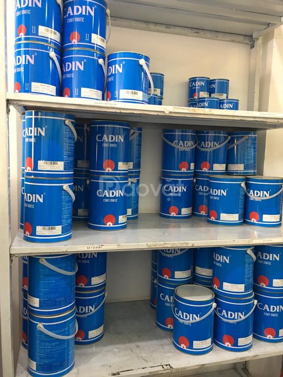 Cung cấp sơn chịu nhiệt Cadin chất lượng giá tốt