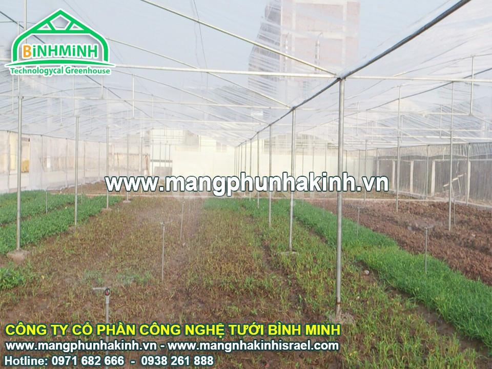 Lưới chống côn trùng nông nghiệp, lưới chống côn trùng trồng rau sạch