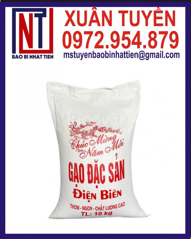 Công ty sản xuất bao đựng gạo, bao bì gạo 10kg (ảnh 1)