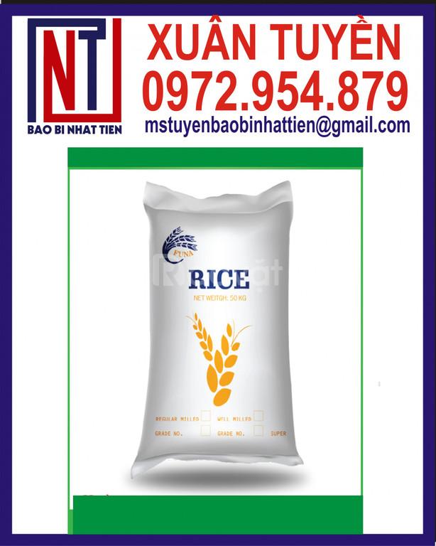 Công ty sản xuất bao đựng gạo, bao bì gạo 10kg (ảnh 4)