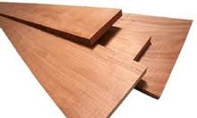 Máy cưa gỗ được ưa chuộng thị trường