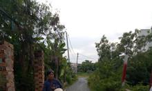 Bán đất thổ cư Bình Chánh cách chợ Bình Chánh 1km