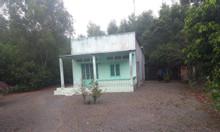 Đất ONT tại Long Phước - kế bên dự án Vineco - chỉ 1.8tr/m2