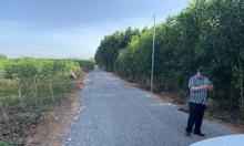 Bán đất ngay UBND xã Tân Hiệp, Long Thành, giá chỉ 1.5 triệu/m2