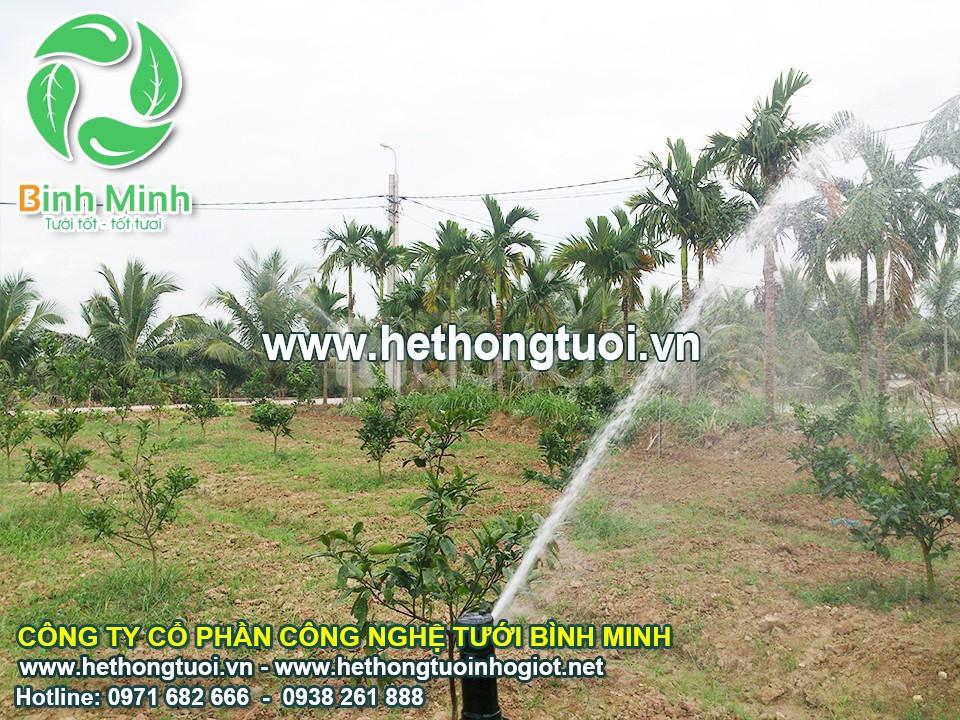 Hệ thống tưới nước sân vườn, thiết bị tưới vườn, vòi tưới sân vườn