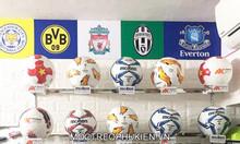 Móc trưng bày bóng đá, bóng rổ, bóng truyền - HTD