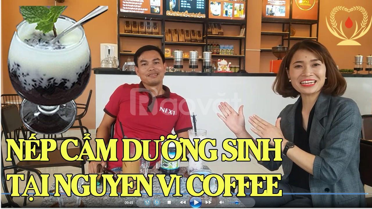 Khám phá cách làm sữa chua nếp cẩm tại nguyên vị Coffee