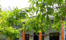 Bán nhà đất vườn sổ đỏ chính chủ, giá hấp dẫn tại Mỏ Cày Nam, Bến Tre