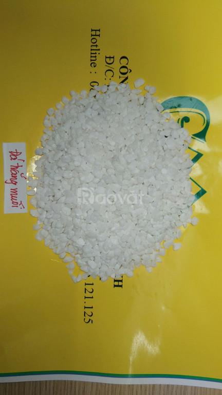 Đá trắng kiếng khoáng sản xanh (ảnh 2)