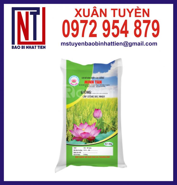 Bao PP dệt đựng lúa 10kg, 40kg