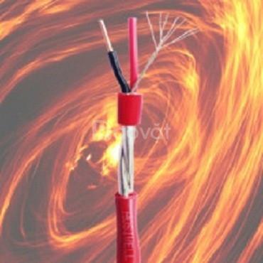 Cáp báo cháy chống nhiễu (Fire alarm cable) của Hosiwell Cable
