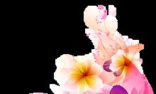 Nhận dạy kèm Corel, Photoshop, Illustrator, Autocad Tân Bình, Tân Phú