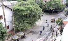 Bán nhà HXT Ba Vân, phường 14, Tân Bình, rộng 5 dài 18.3
