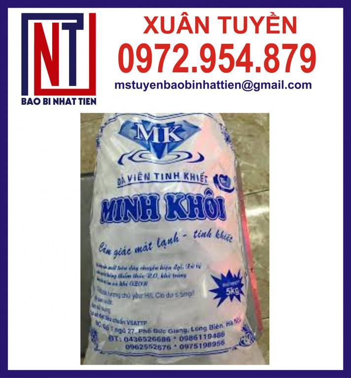 Sản xuất túi nilong đựng nước đá