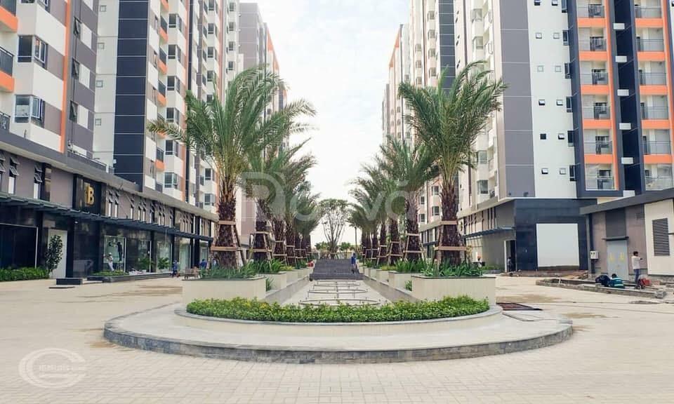 Cho thuê căn hộ Him Lam Phú An, Quận 9, TPHCM