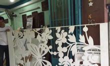 Cửa kính, cửa nhôm ốp tấm hoa văn sắt CNC nghệ thuật sang trọng