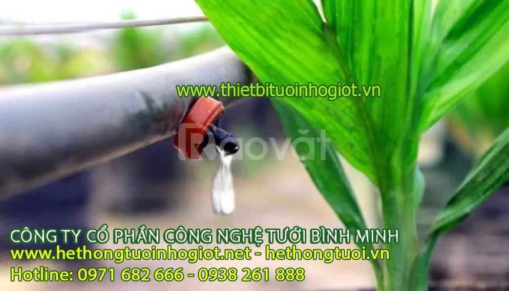 Tưới nhỏ giọt Bình Minh hệ thống tưới nhỏ giọt Bình Minh
