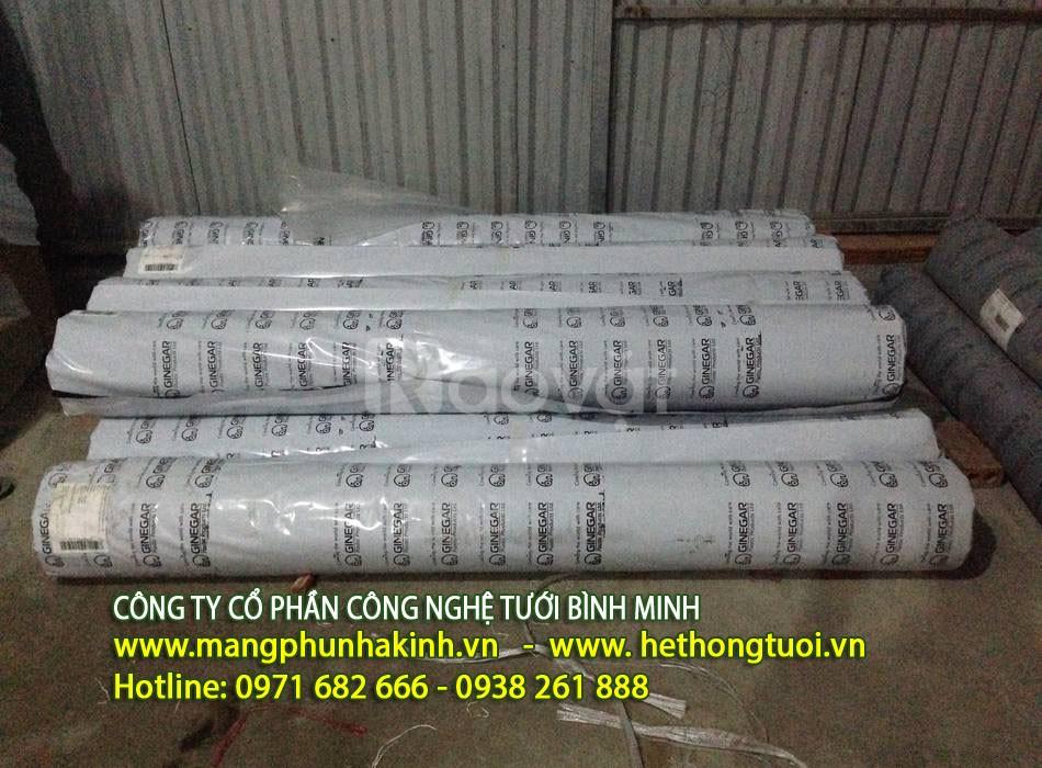 Cơ sở bán màng nilong nhà kính tại thanh hóa, cấu trúc màng nilong