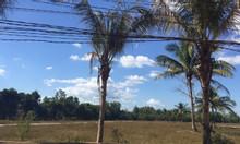 Đất nền trung tâm Phú Quốc giá đầu tư