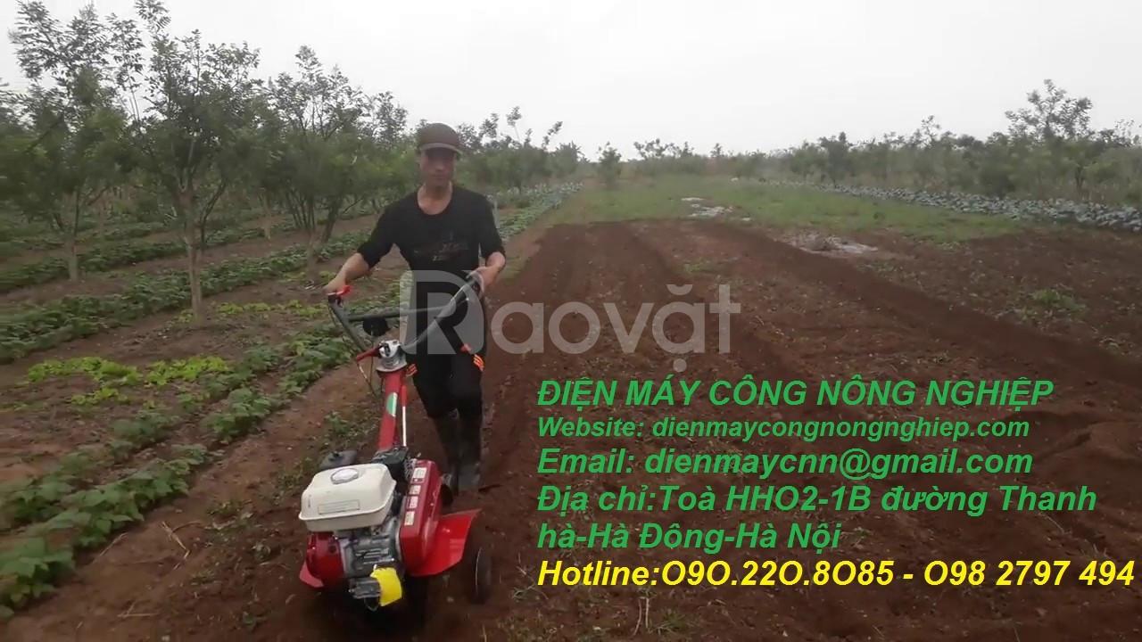 Nơi bán máy xới đất mini chạy xăng Honda GX200 xịn giá rẻ