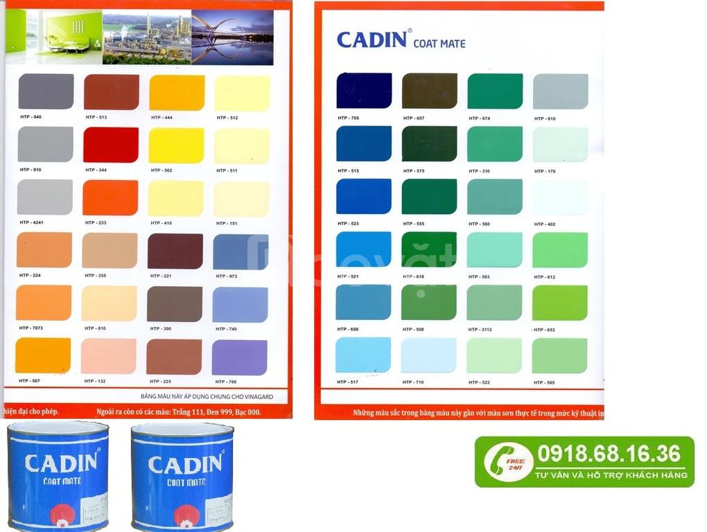Công ty chuyên bán sơn dầu giá rẻ tại Tây Ninh
