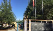 Chuyển nhượng quyền sử dụng đất và nhà xưởng khu CN Phú Bài, giá tốt